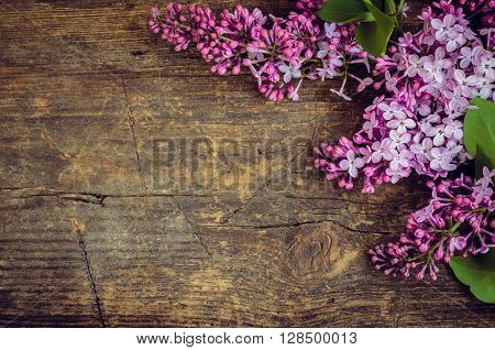 Lilac horizontal background. Twig purple lilac on wooden board with place for text. Syringa vulgaris. Spring flower. Happy Mothers Day. Mother's Day greetings card. Mothers Day gift.