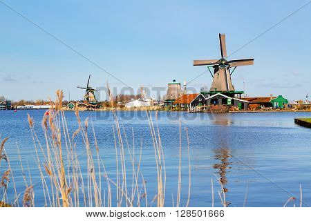 Windmill in Zaanse Schans, traditional dutch village in Netherlands, North Holland and reflection in the water