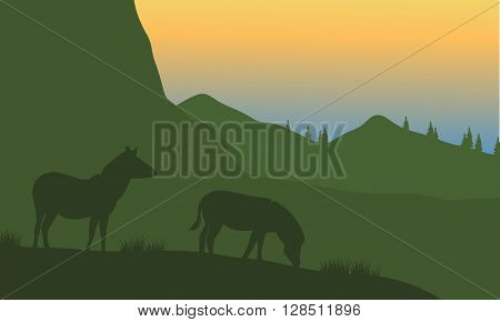 Silhouette of zebra on the mountain with green backgrounds