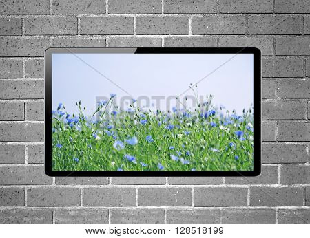 LCD tv with flower meadow on screen hanging on brick wall