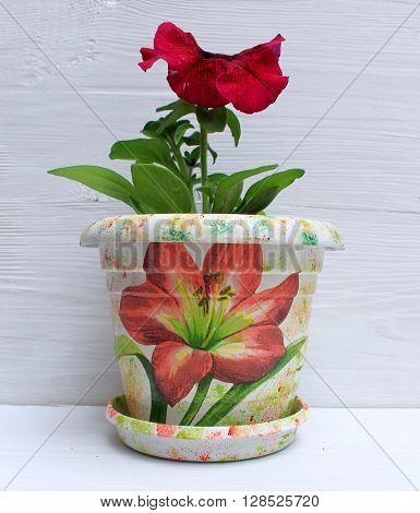 Petunia flower in a beautiful decorative flowerpot handmade