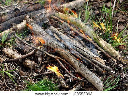 The fire which ignited in the forest. Collected dry twigs piled in a heap. Kindled a fire using dry twigs sticks and firewood.