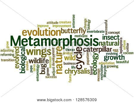 Metamorphosis, Word Cloud Concept 3