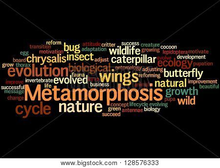 Metamorphosis, Word Cloud Concept 5