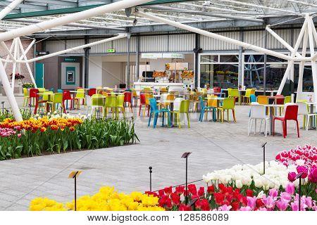 Lisse, Netherlands - April 4, 2016: Cafe and colorful tulips flower blossom in pavillion of dutch spring garden Keukenhof, Lisse, Netherlands