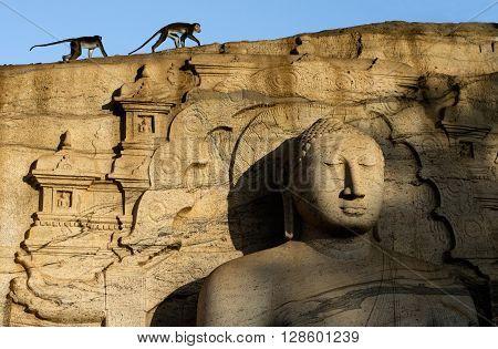 Seated Buddha, Gal Vihara, Polonnaruwa, UNESCO World Heritage Site, North Central Province, Sri Lanka, Asia