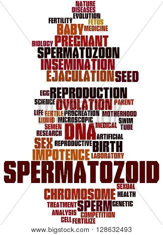 Spermatozoid, Word Cloud Concept 2