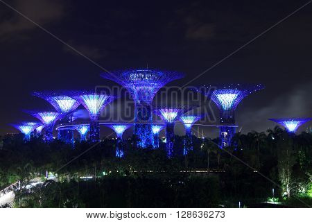 Singapore, Singapore - January 14, 2016: Supertree grove and walkway at night in Gardens by the Bay. Supertrees are tree-like structures that dominate the Gardens landscape. Gardens by the Bay is a park in central Singapore.