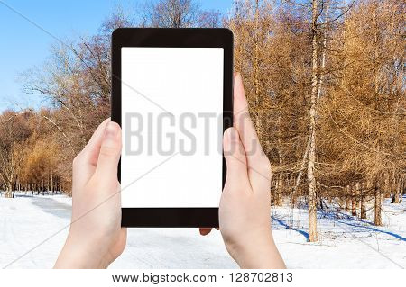 Tourist Photographs Frozen Path In Larch Forest