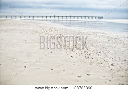 Sea beach shells blue sky sand sun daylight relaxation landscape wooden bridge view in Jacksonville beach, Florida