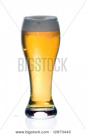 Beer on white background