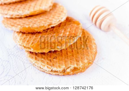 Honey Galleta