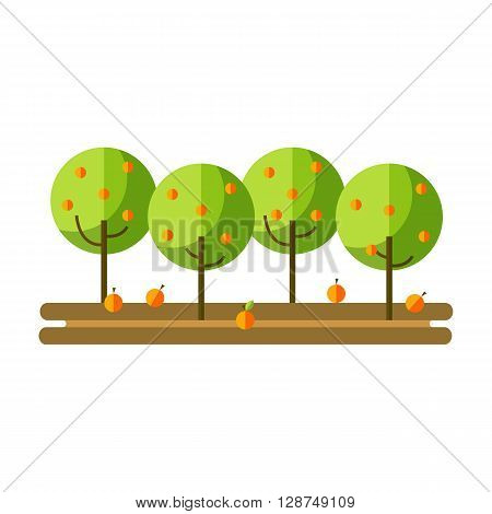 Flat vector illustration apple orchard and harvest fruit. Apple orchard summer and autumn. Apple harvest and apple orchards flat icon.