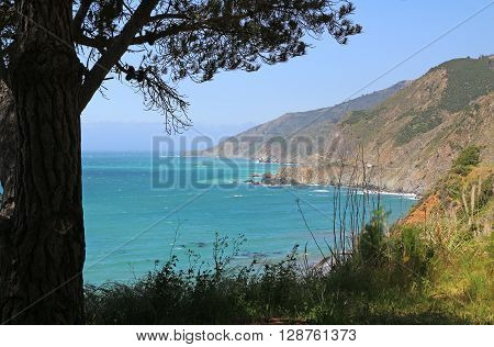 Scenery along California's Hwy 1 in the Big Sur region