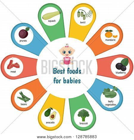 Baby child infographic presentation best foods for babies. Infographic with simple data and ration.