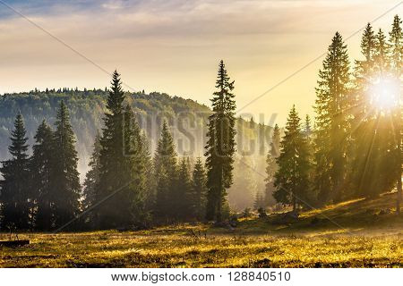 Fog On Hot Sunrise In Mountains