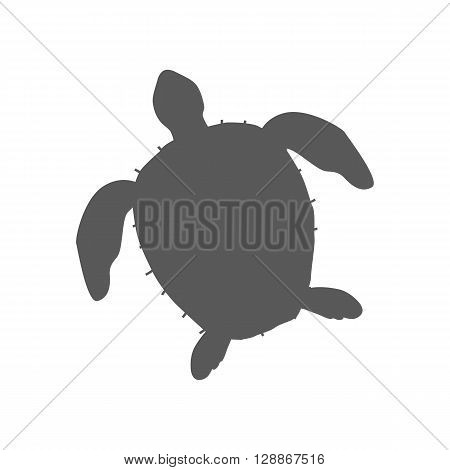 Turtle isolated on white background design flat. Tortoise with a big black carapace. The head and fins are covered with turtles speckled pattern. Creature  wildlife of wold world. Vector illustration