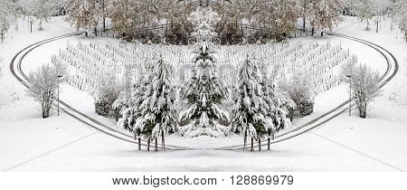 panoramic car wheels prints in snow of sunny day