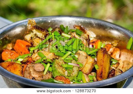 Grilled vegetables with green bunch-onion in metal dish on picnic outdoor