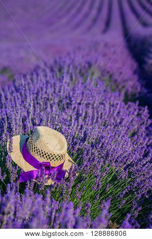 Straw hat in Lavanda fields in Provence near Valensole. France