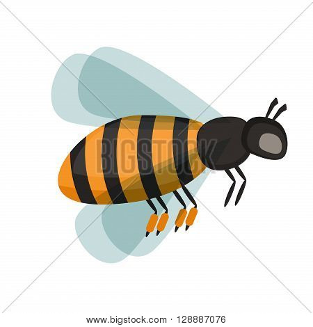 European western honey bee, isolated on white honey bee. Honey bee cartoon vector and honey bee yellow insect. Honey bee nature animal and worker yellow honey bee fly wing antenna busy insect.