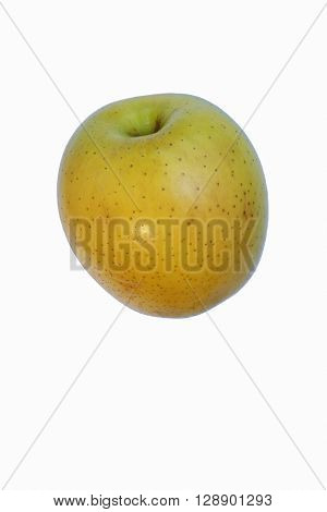Ginger gold apple (Malus domestica Ginger Gold). Hybrid between Golden Delciuos apple and Albemarle (Newtown) Pippin apple. Image of single apple isolated on white background