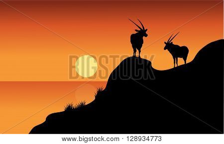 Antelope silhouette on cliff with orange backgrounds