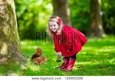 Girl feeding squirrel in autumn park. Little girl in red trench coat and rain boots watching wild animal in fall forest with golden oak and maple leaves. Children play outdoors. Kids playing with pets ** Note: Soft Focus at 100%, best at smaller sizes