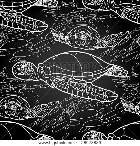 Graphic Hawksbill sea turtle drawn in line art style. Ocean vector seamless pattern