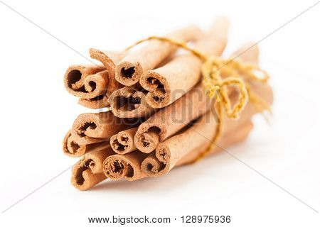 Front side view of Raw Organic Cinnamon sticks (Cinnamomum verum) bundle tied up with turmeric colored thread.