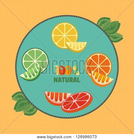 Citrus Fruits. Sliced lemon lime orange grapefruit leaves. Fresh lemon wedges Concept. Organic fruits natural. Tropical citrus. Natural fruit with vitamin for juice dessert. Vector Illustration