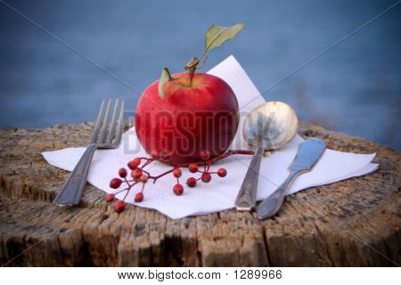 Red Apple Dinner