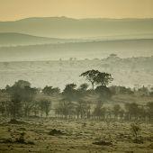 Africa landscape Serengeti National Park, Serengeti, Tanzania poster
