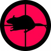 In the scope series - Rat in the crosshair of a gun's telescope. Can be symbolic for need of protection, being tired of, intolerance or being under investigation. poster