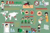 Zika virus infographic elements transmission prevention symptoms and treatment zika fever element vector concept. poster