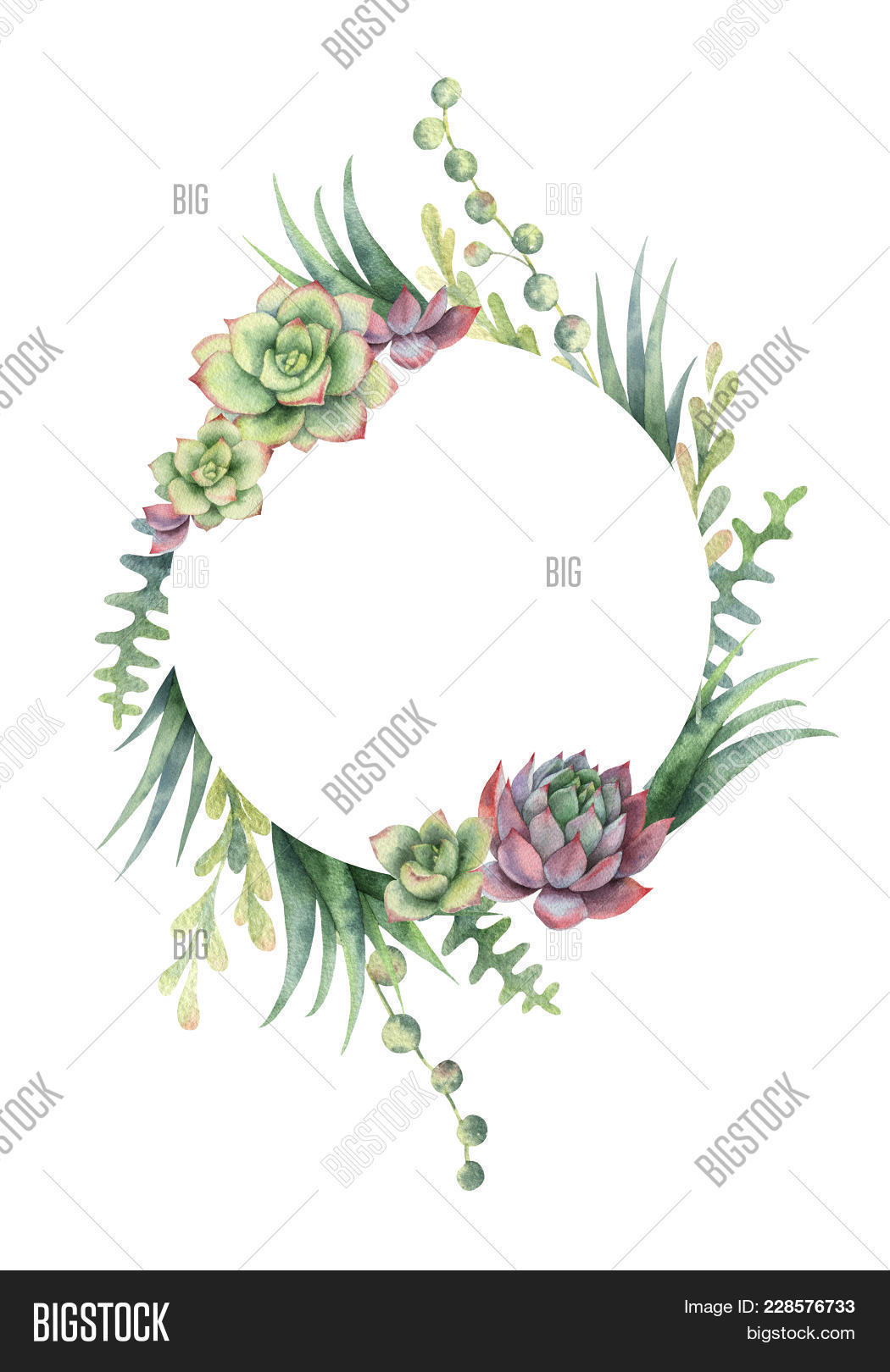 Watercolor Frame Cacti Image & Photo (Free Trial) | Bigstock