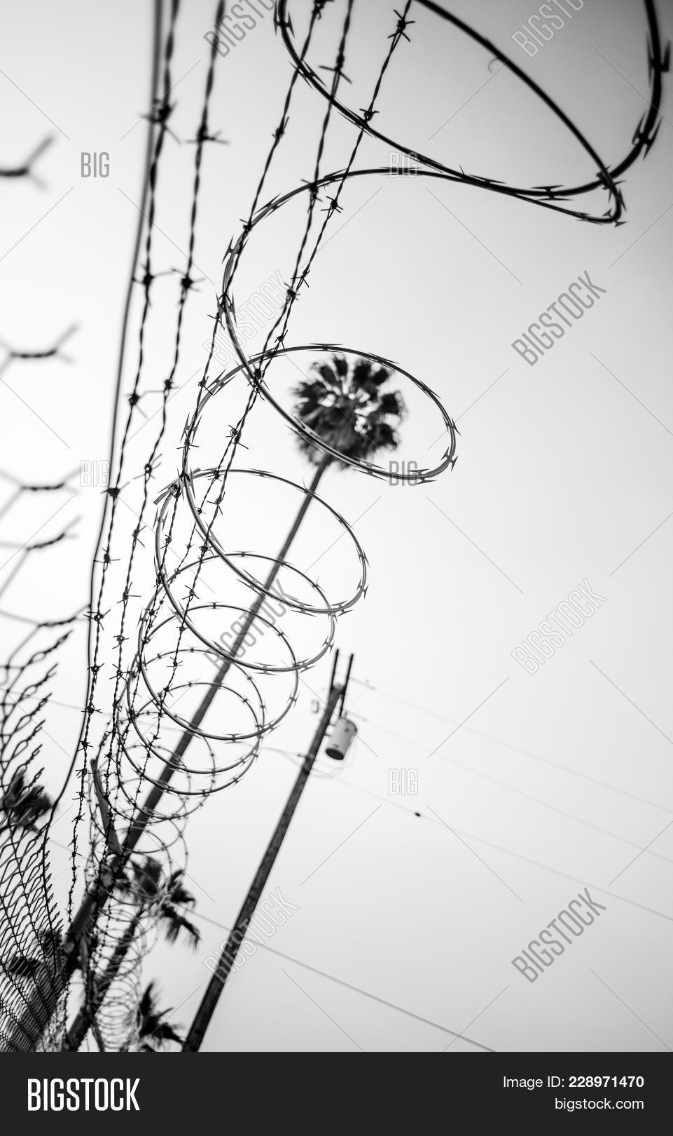 Erfreut Razor Wire Drawing Bilder - Schaltplan Serie Circuit ...