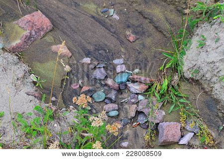 Colorful Rocks In A Damp Creek Bed After A Gentle Spring Rain.