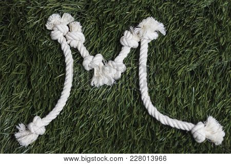 Rope Latin Alphabet On Grass. Letter M