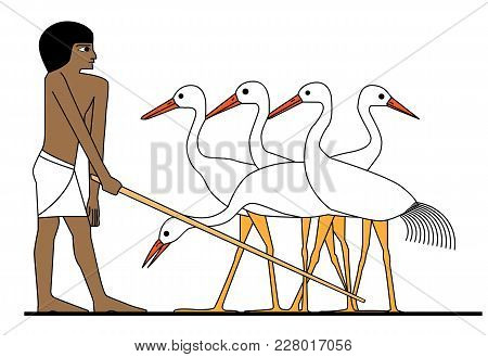 Egypt Man Working At Ciconia Farm, Man At Work, Man At Work, Egypt Murals, Ancient Egypt People, Peo