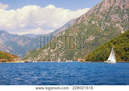 Summer In Montenegro. View Of Bay Of Kotor ( Adriatic Sea ) With Sailing Boats