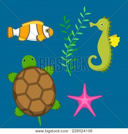 Set Aquatic Funny Sea Animals Underwater Creatures Cartoon Characters Shell Aquarium Vector Illustra
