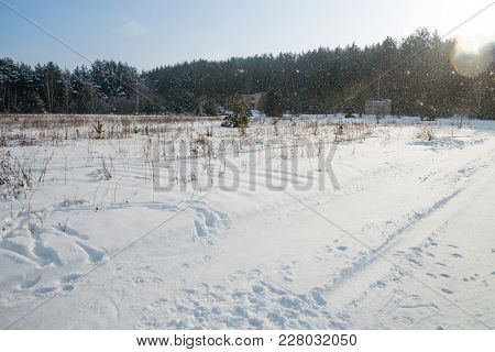 A Landscape With Traces On The Snow In The Field