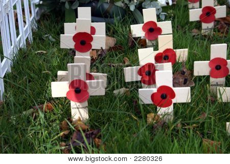 Crosses Red Poppies Image Photo Free Trial Bigstock