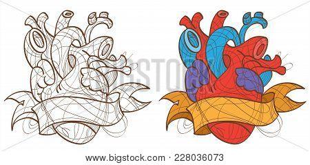 Illustration Of The Human Heart, Tattoo. Vector Illustration