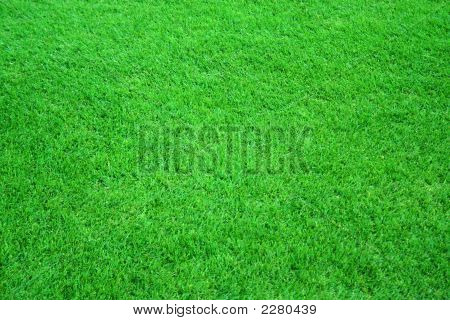 Football/ golf/ soccer field. Green grass background texture. poster