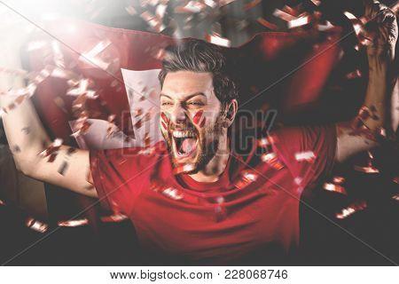 Swiss fan celebrating