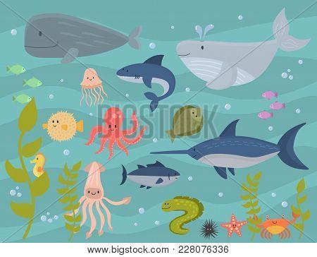 Sea Animals Vector Creatures Characters Cartoon Ocean Wildlife Marine Underwater Aquarium Life Water