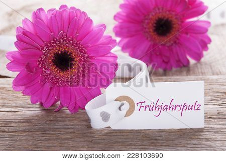 Label With German Text Fruehjahrsputz Means Spring Cleaning. Pink Spring Gerbera Blossom. Vintage, R
