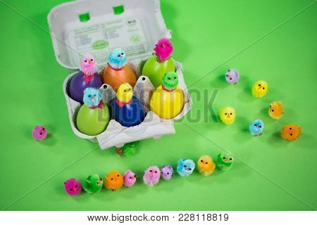 Eggbox With Eggs And Funny Chicks, Green Background